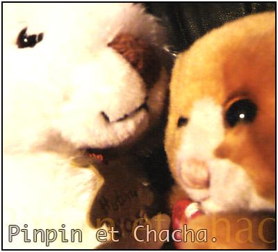 Pinpin et Chacha